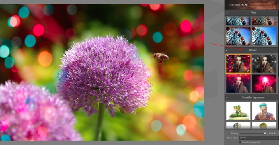 How to Blur Image Background: 6 Ways to Perfect your artwork