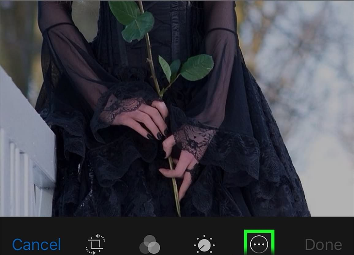 Add Text to Photos in iPhone
