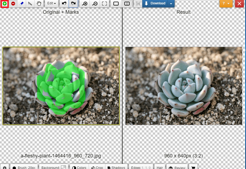 Change Background of Photo in Photoshop Online - Highlight Areas to Keep