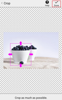 Change Photo Effects and Background Online - Rectangular Crop Tool