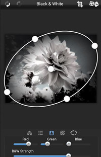 Edit Black and White Photos - Dramatic Black & White