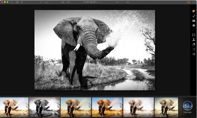 Edit Black and White Photos - Luminar