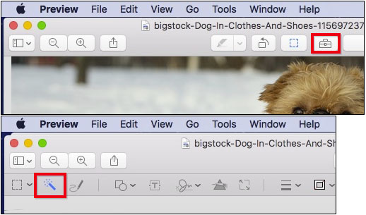 Make Photo Background Transparent - Use Markup Toolbar