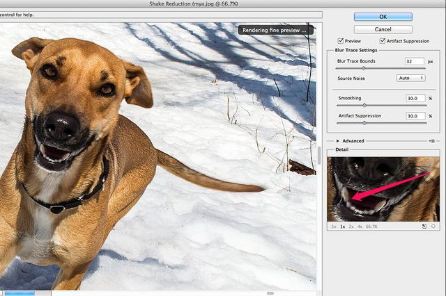 Helpful Methods to Remove Blur from Image - Sharpen Image