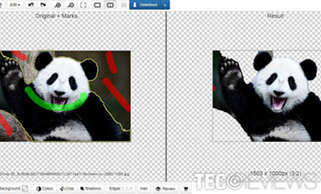 Remove White Background from Image - Clipping Magic