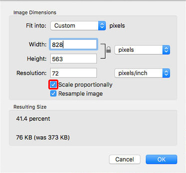 Resize JPG - Set up the Width and Height of the Image