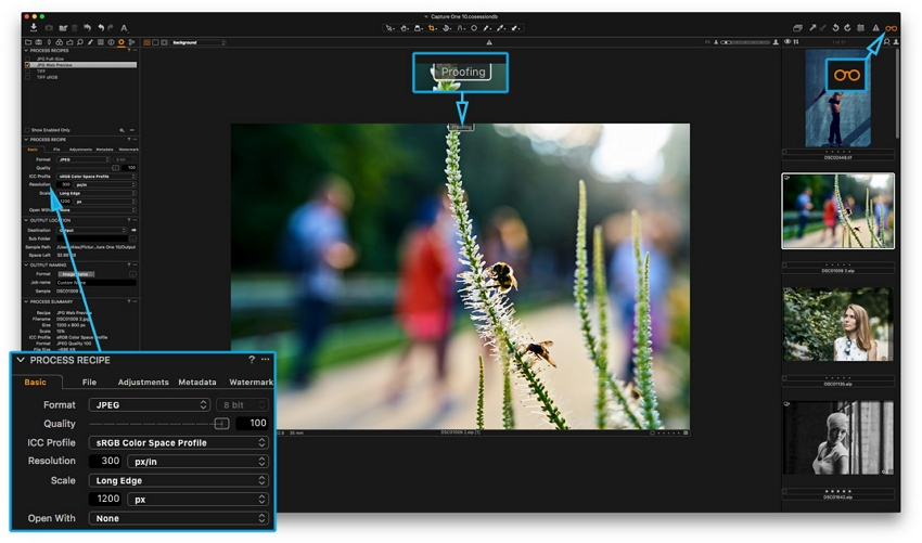 Photo Editor for PC - Phase one Capture one Pro 11