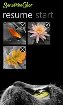 Windows 10 Photo Editor - Sense the Color