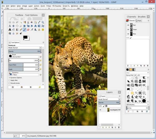 Macbook Photo Editor - GIMP