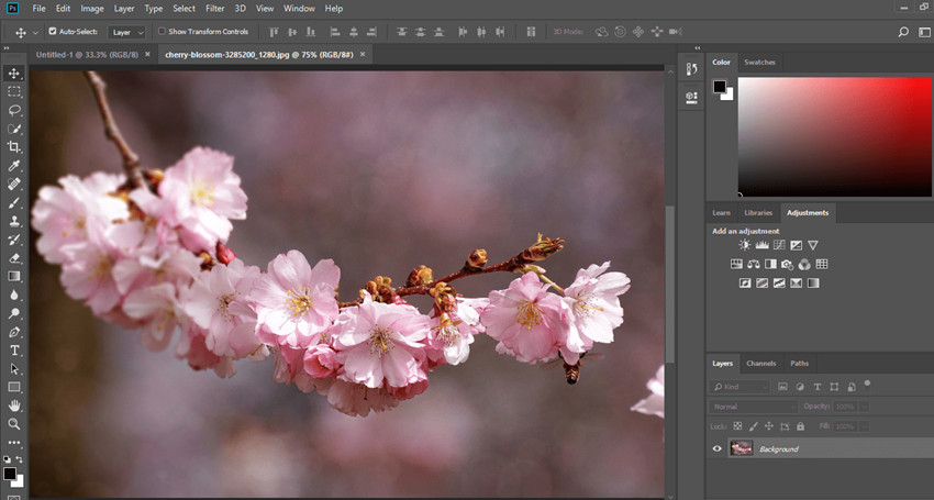Helpful Blur Photo Editor - Adobe Photoshop