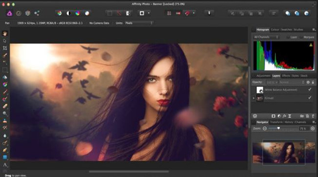Camera Photo Editors for Photographers - Phase One Capture One Pro 10