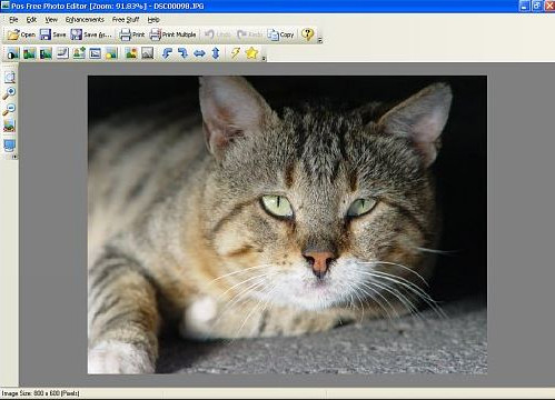 Photo Background Changer Software for Windows 7 - Pos Free Photo Editor
