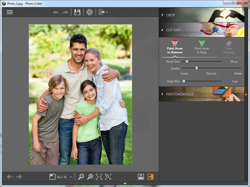 Most Helpful Photo Background Changer Software - Choose Cut Out Option