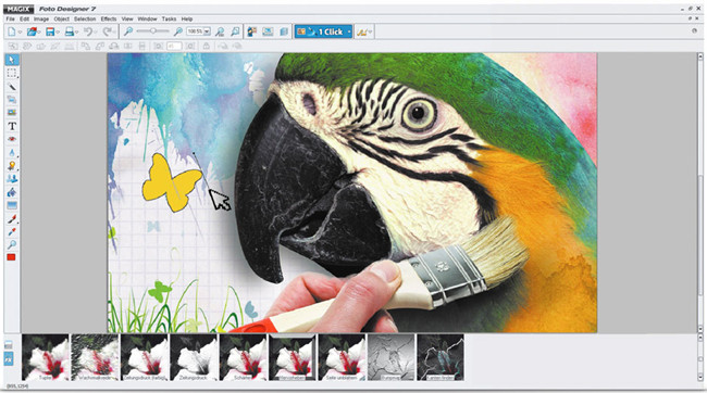 Photo Frame Editor Software and Apps - MAGIX Photo Designer