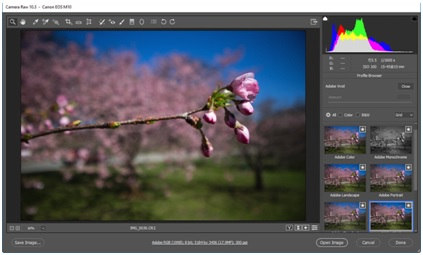 Movie Effect Photo Editor-Adobe Photoshop
