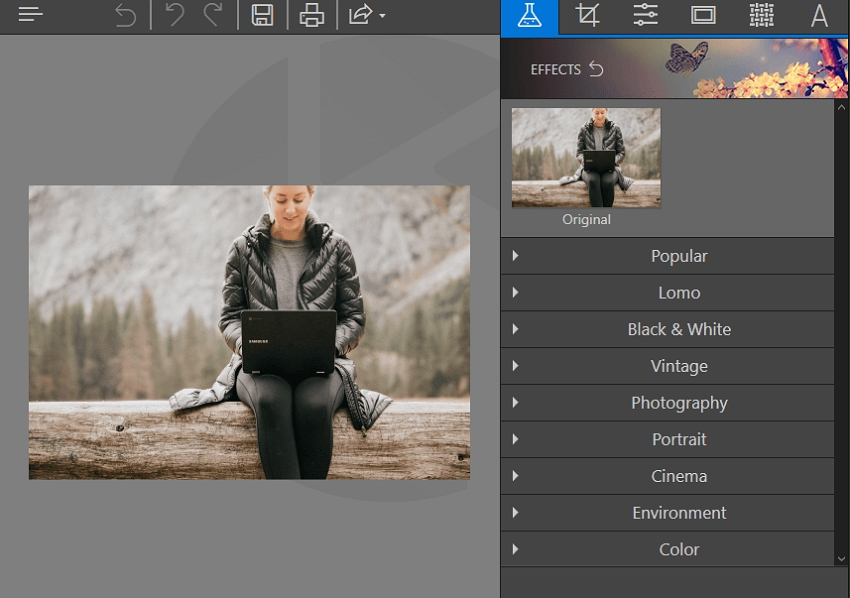 Old Photo Effects-Choose the Effects Tab