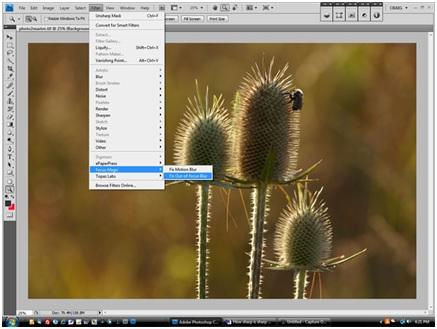 Photo Filters - FocusMagic