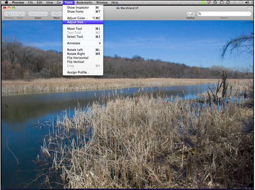 Make an Image Bigger - Choose Adjust Size Tool
