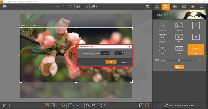 How to Make Your Photo Match Facebook Post Image Size - Create Custom Crop
