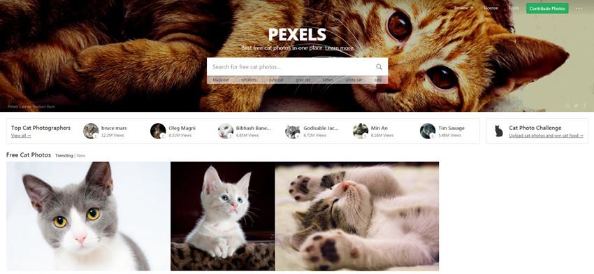 Free Image Source - Pexels