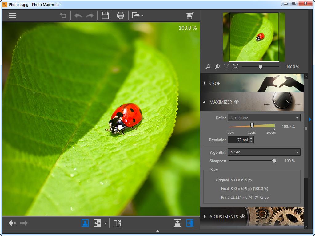 Use o Maximizer da foto para ampliar fotos - escolha o parâmetro para a foto de ampliação