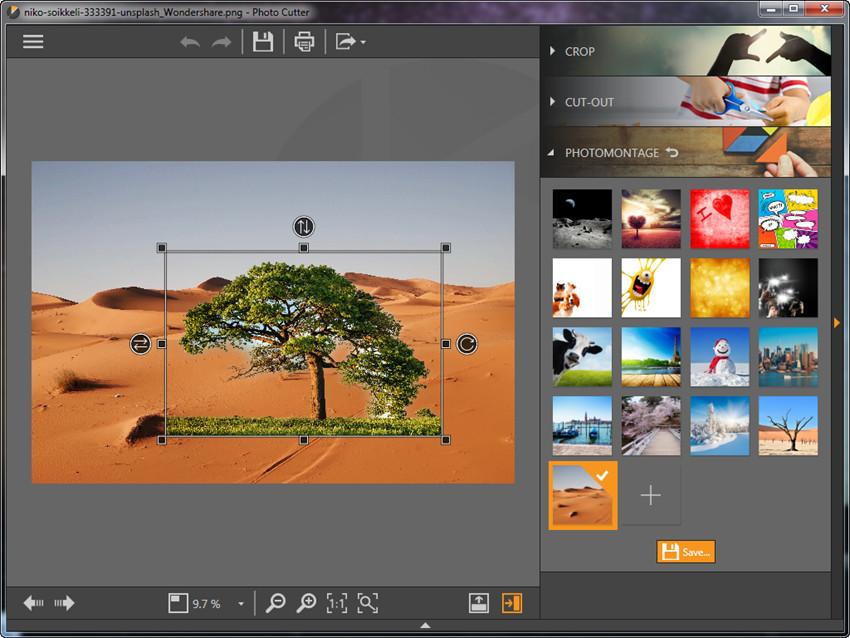 Photomontage - Adjust Photo